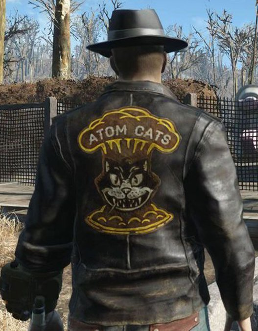 fallout 4 atoms cat brown brown jacket
