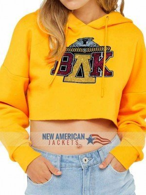 beyonce coachella sweatshirt